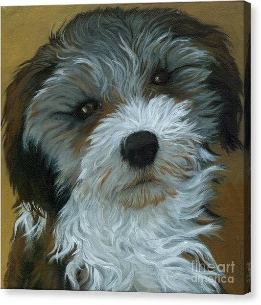 Chico - Dog Portrait Oil Painting Canvas Print by Linda Apple