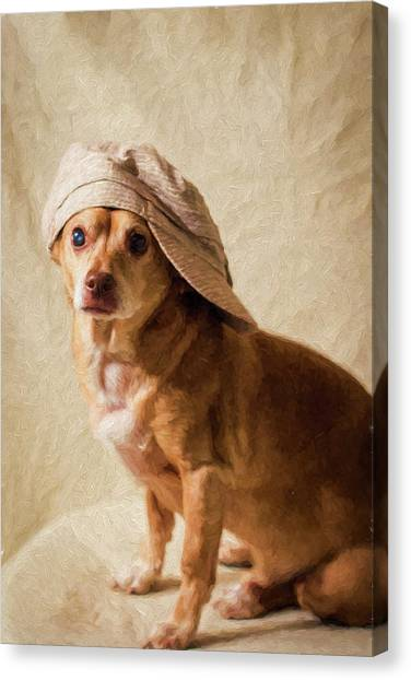 Chihuahua In A Newsboy Hat Canvas Print
