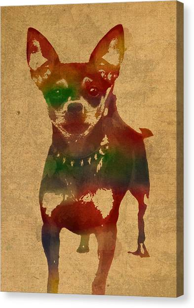 Chihuahuas Canvas Print - Chihuahua Watercolor Portrait On Worn Canvas by Design Turnpike