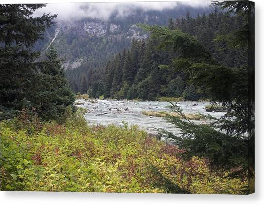 Chillkoot River 3 Canvas Print