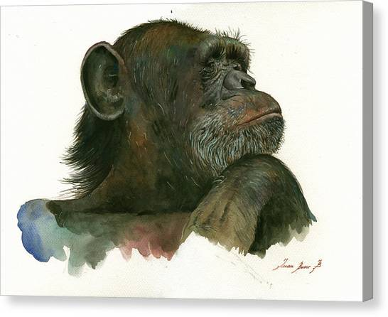 Chimpanzees Canvas Print - Chimp Portrait by Juan Bosco