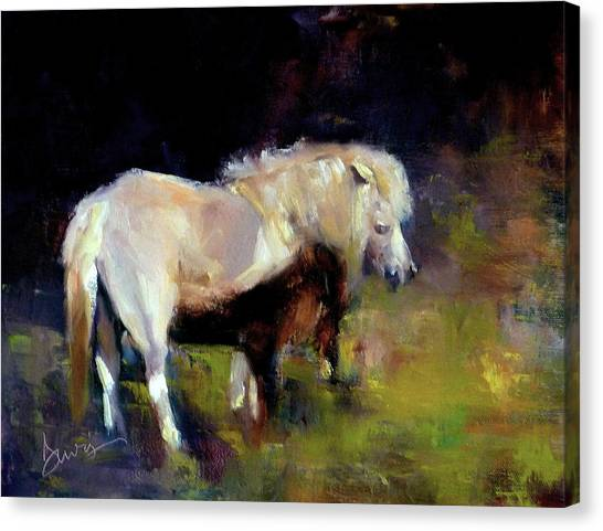 Chincoteague Pony Canvas Print by Xx X