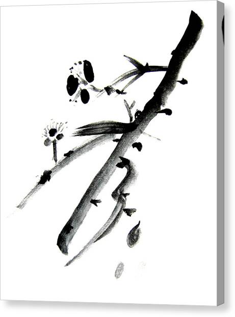 Chinese Brush L Canvas Print by Danny Pike