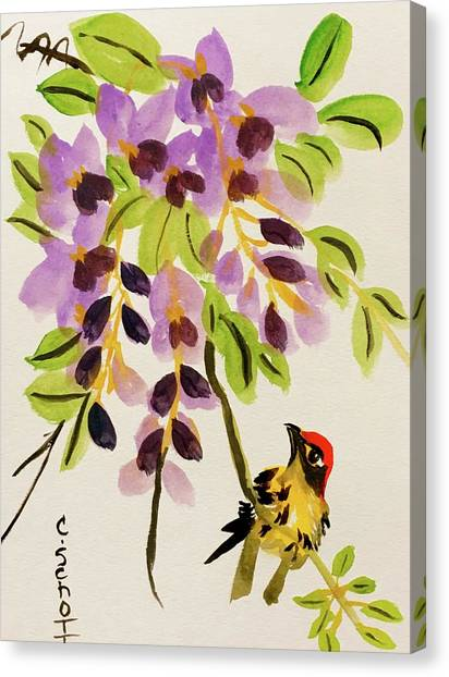 Chinese Wisteria With Warbler Bird Canvas Print
