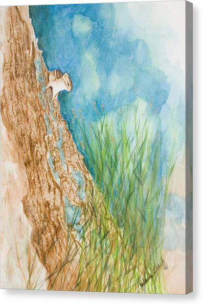 Chipmonk Canvas Print