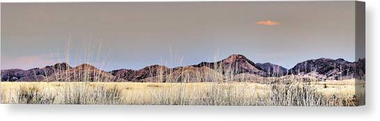 Chiracahuas Panorama Canvas Print by Sharon Broucek