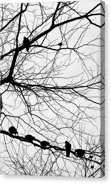 Canvas Print - Chirping Hidden Messages  by The Artist Project