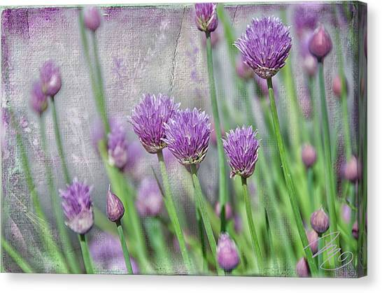 Chives In Texture Canvas Print