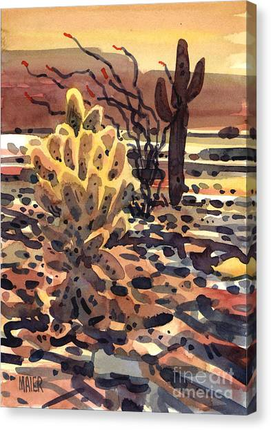Sonoran Desert Canvas Print - Cholla Saguaro And Ocotillo by Donald Maier