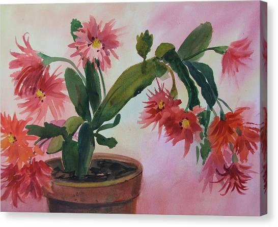 Christmas Cactus Canvas Print by Dianna Willman