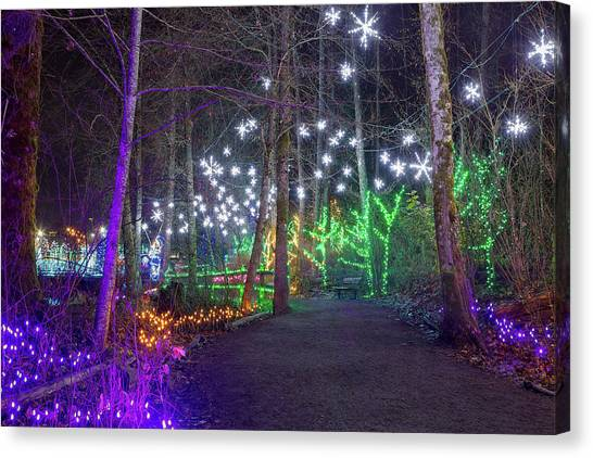 Canvas Print - Christmas Lights Decoration Along Lafarge Lake Path by David Gn