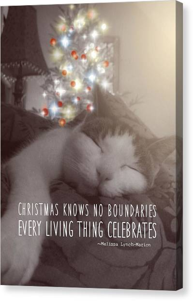 Christmas Nap Quote Canvas Print by JAMART Photography