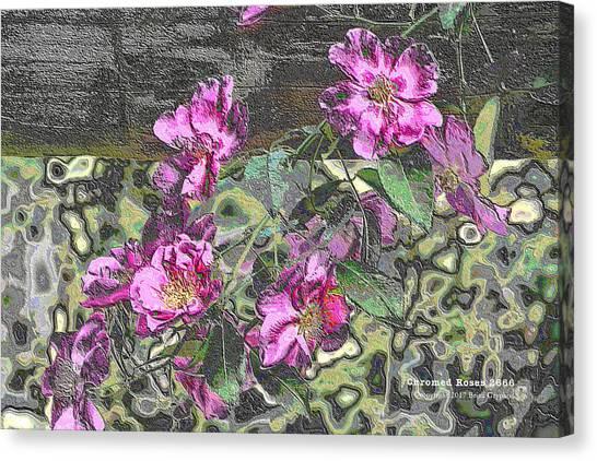 Chrome Roses 2666 Canvas Print
