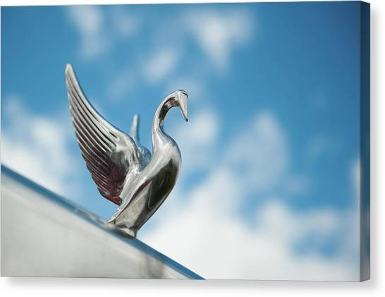 Chrome Swan Canvas Print
