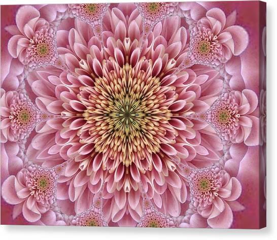 Chrysanthemum Beauty Canvas Print