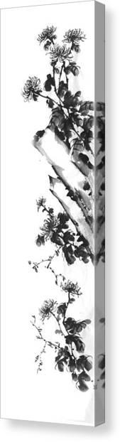 Chrysanthemum Stone 2 Canvas Print by Chang  Lee