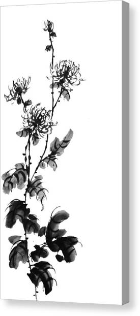 Chrysanthemum3 Canvas Print by Chang  Lee