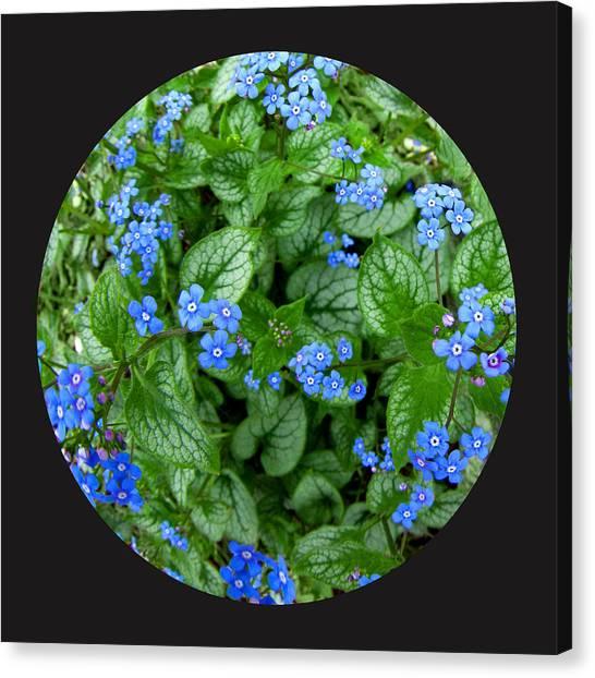 Circle Of Blue Canvas Print by Elizabeth Reynders