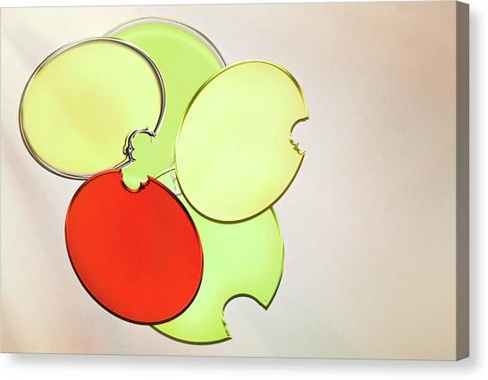 Circles Of Red, Yellow And Green Canvas Print