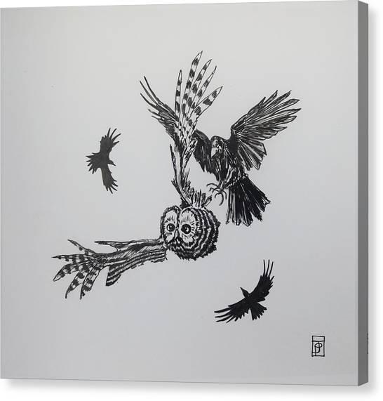 Raven Canvas Print - Circling by John Parish