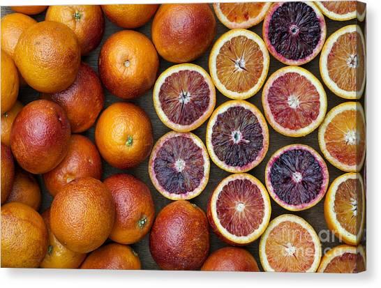Vegetable Garden Canvas Print - Citrus Blood Oranges by Tim Gainey
