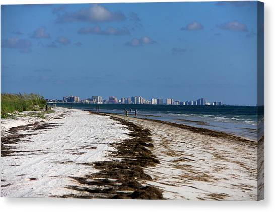 City Of Clearwater Skyline Canvas Print