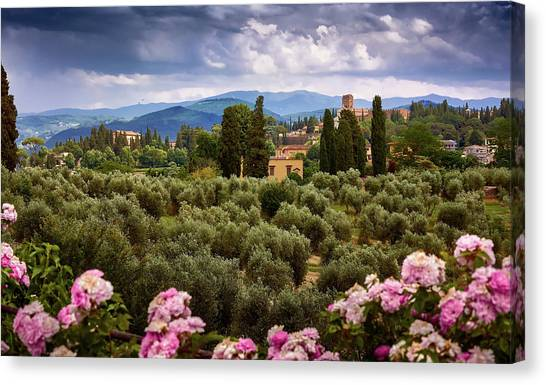 Tuscan Landscape With Roses And Mountains In Florence, Italy Canvas Print