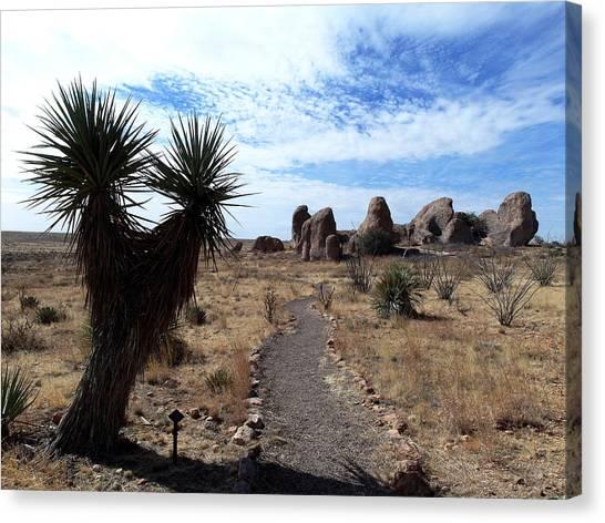 City Of Rocks - New Mexico Canvas Print