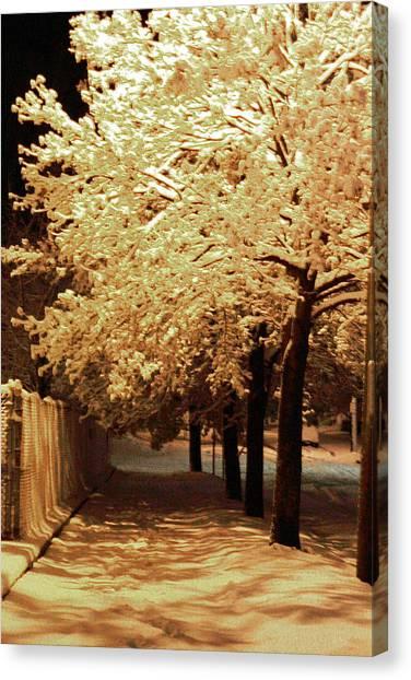 City Snow Light Canvas Print