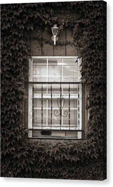 City Window Detail Canvas Print
