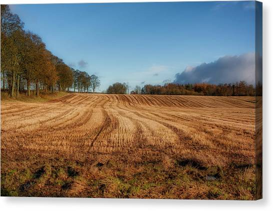 Canvas Print featuring the photograph Clackmannanshire Countryside by Jeremy Lavender Photography