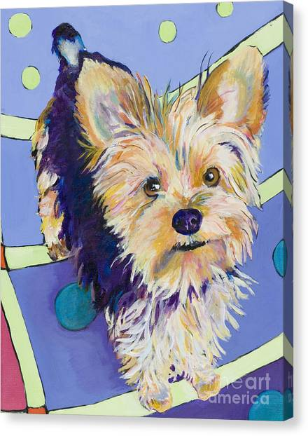 Yorkshire Terrier Canvas Print - Claire by Pat Saunders-White
