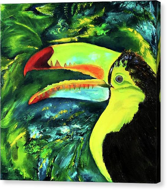 Clara's Toucan Canvas Print