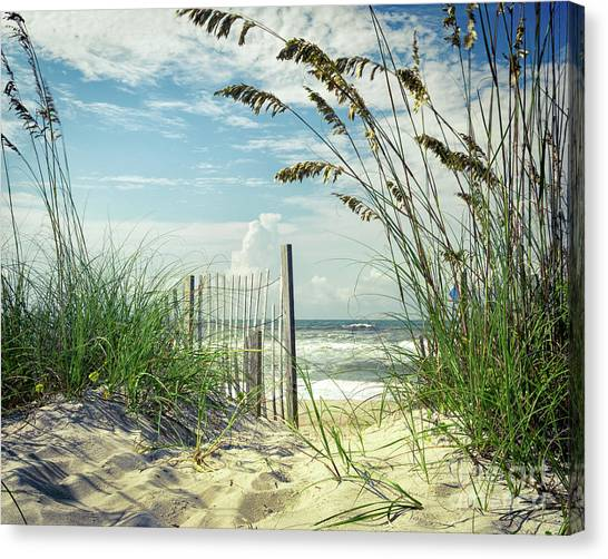 To The Beach Sea Oats Canvas Print