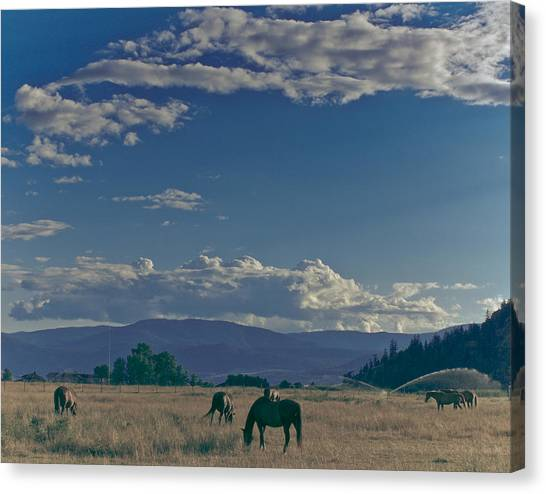 Classic Country Scene Canvas Print