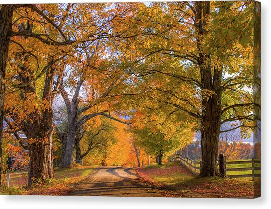 Classic Vermont Fall Canvas Print