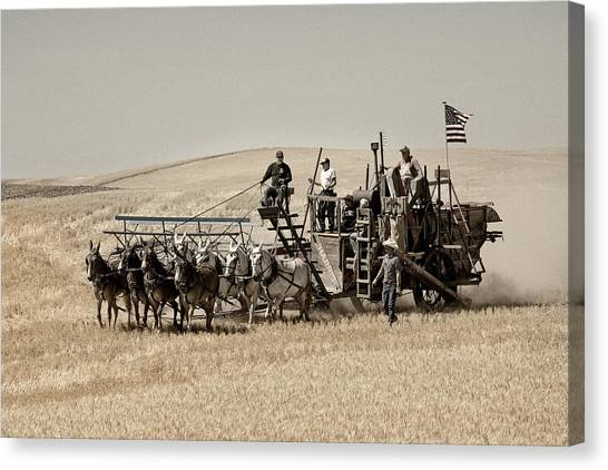 Canvas Print featuring the photograph Classic Vintage Harvest by Mary Jo Allen