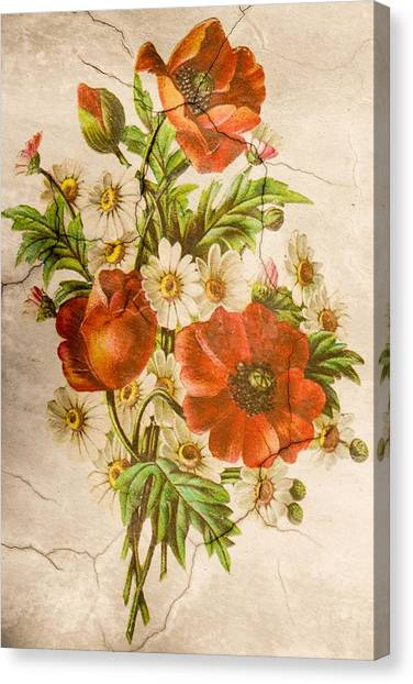 Classic Vintage Shabby Chic Rustic Poppy Bouquet Canvas Print