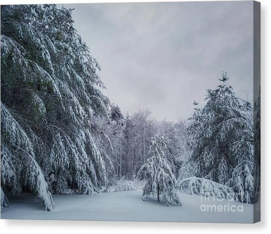 Classic Winter Scene In New England  Canvas Print