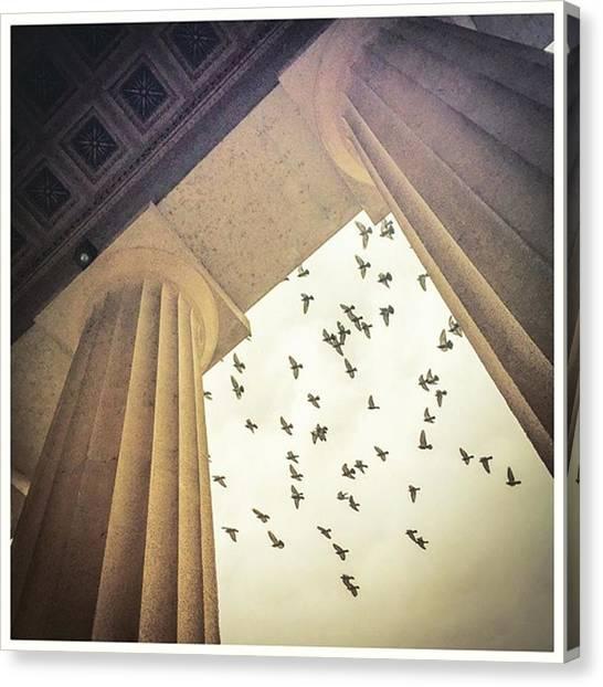 The Parthenon Canvas Print - Classical Avian Enthusiasts #parthenon by Alexis Fleisig