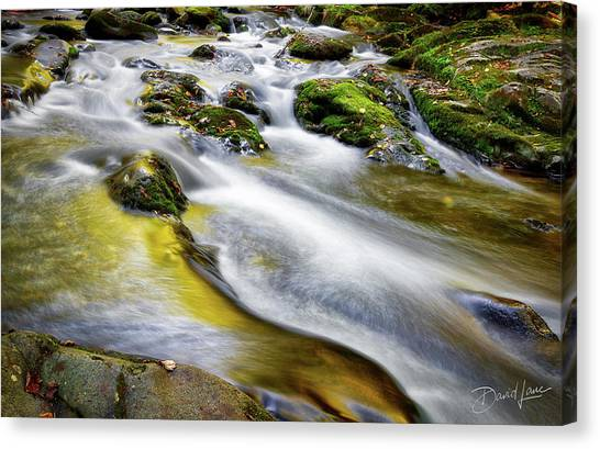Canvas Print featuring the photograph Clear Mountain Water  by David A Lane