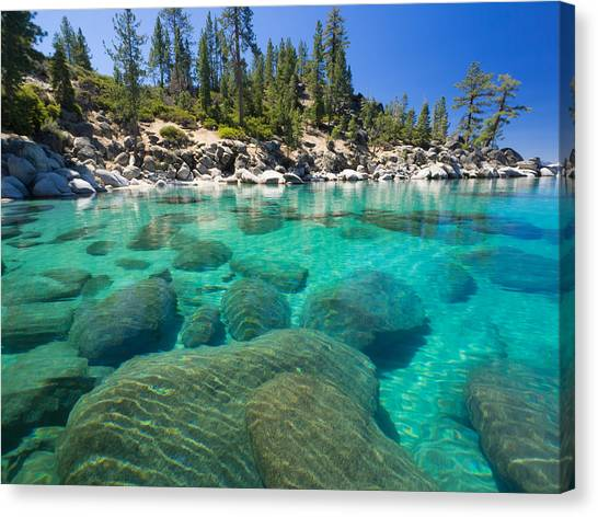 Clear Water Canvas Print