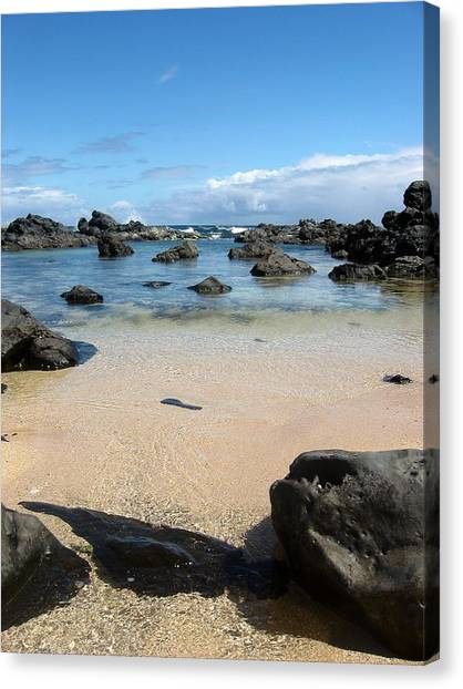 Clear Water Shore Canvas Print by Halle Treanor