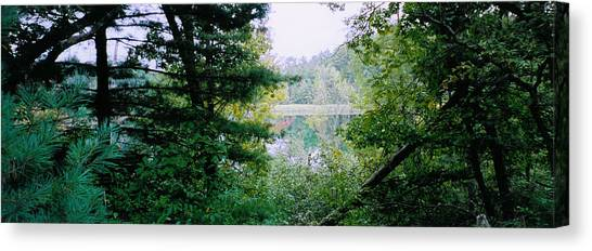 Clearing Glimpsed 8 Canvas Print by Tom Hefko