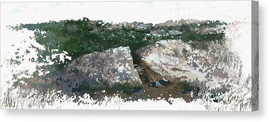Cleft Rock Canvas Print by Ronald Rosenberg