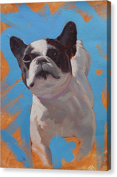 French Bull Dogs Canvas Print - Cleo The French Bull Dog by Taylor Paints
