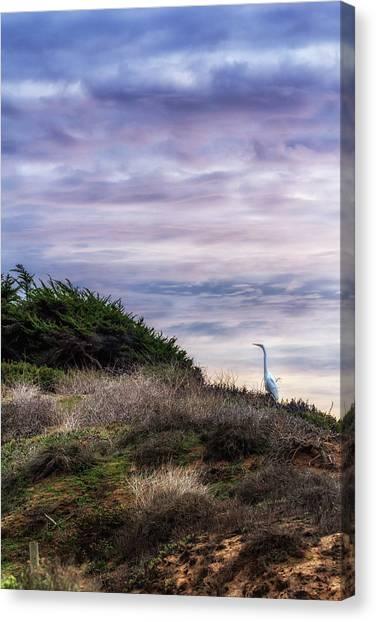 Cliffside Watcher Canvas Print