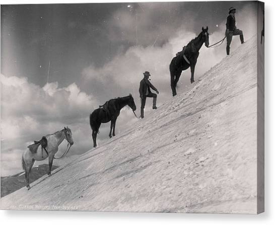 Funny Horses Canvas Print - Climbing Muellers Peak, Summer Kerry And Co, Sydney, Australia, C. 1884-1917 Made By Kerry, Charl by Kerry and Co