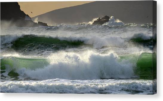 Clogher Beach In Kerry Canvas Print