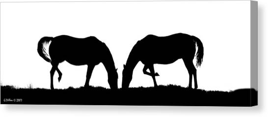 Close Companions Canvas Print